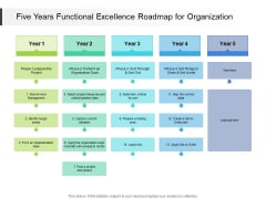 Five Years Functional Excellence Roadmap For Organization Ideas