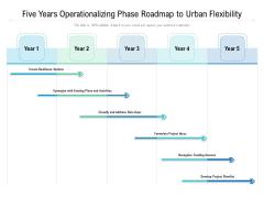 Five Years Operationalizing Phase Roadmap To Urban Flexibility Professional