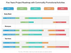 Five Years Project Roadmap With Commodity Promotional Activities Infographics