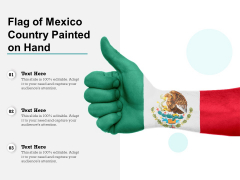 Flag Of Mexico Country Painted On Hand Ppt PowerPoint Presentation Summary Display PDF