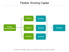 Flexible Working Capital Ppt PowerPoint Presentation Pictures Files Cpb