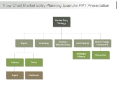 Flow Chart Market Entry Planning Example Ppt Presentation