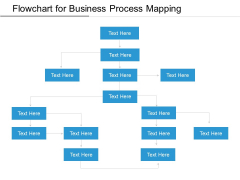 Flowchart For Business Process Mapping Ppt PowerPoint Presentation Gallery Layout PDF