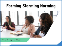 Forming Storming Norming Business Team Ppt PowerPoint Presentation Complete Deck