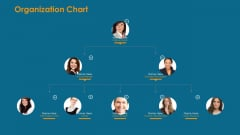 Formulating And Implementing Organization Sales Action Plan Organization Chart Inspiration PDF