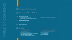 Formulating And Implementing Organization Sales Action Plan Table Of Contents Guidelines PDF