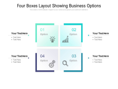 Four Boxes Layout Showing Business Options Ppt PowerPoint Presentation Summary Show