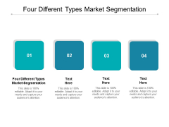 Four Different Types Market Segmentation Ppt PowerPoint Presentation Layouts Topics Cpb