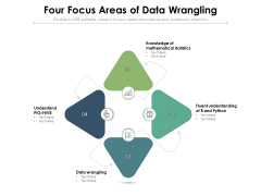 Four Focus Areas Of Data Wrangling Ppt PowerPoint Presentation Layouts Backgrounds PDF
