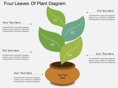 Four Leaves Of Plant Diagram Powerpoint Template