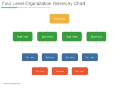 Four Level Organization Hierarchy Chart Ppt PowerPoint Presentation Clipart