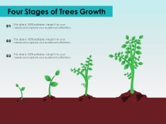 Four Stages Of Trees Growth Ppt PowerPoint Presentation Infographics Example Introduction PDF