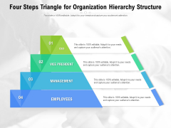 Four Steps Triangle For Organization Hierarchy Structure Ppt PowerPoint Presentation File Icons PDF