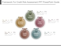 Framework For Credit Risk Assessment Ppt Powerpoint Guide