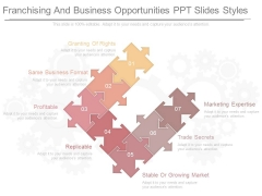 Franchising And Business Opportunities Ppt Slides Styles