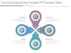 Franchising Opportunities Template Ppt Examples Slides