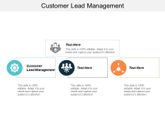 Free Customer Lead Management Ppt PowerPoint Presentation Background  Cpb