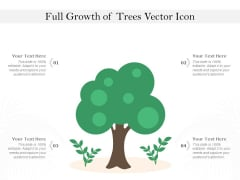 Full Growth Of Trees Vector Icon Ppt PowerPoint Presentation Infographics Slides PDF