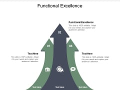 Functional Excellence Ppt PowerPoint Presentation Show Designs Cpb