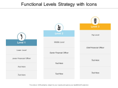 Functional Levels Strategy With Icons Ppt PowerPoint Presentation Infographic Template Aids