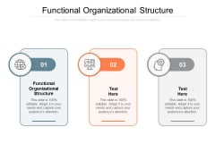 Functional Organizational Structure Ppt PowerPoint Presentation File Clipart Images Cpb