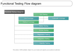 Functional Testing Flow Diagram Ppt PowerPoint Presentation File Structure