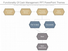 Functionality Of Cash Management Ppt Powerpoint Themes