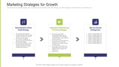 Funding Pitch Deck To Obtain Long Term Debt From Banks Marketing Strategies For Growth Ppt Professional Summary PDF
