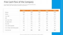 Funding Pitch To Raise Funds From PE Free Cash Flow Of The Company Diagrams PDF