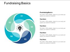 Fundraising Basics Ppt PowerPoint Presentation Summary Show Cpb