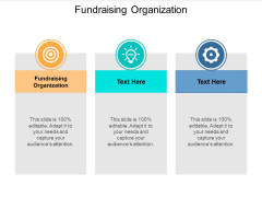 Fundraising Organization Ppt Powerpoint Presentation Slides Show Cpb