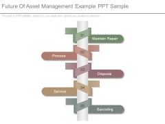 Future Of Asset Management Example Ppt Sample