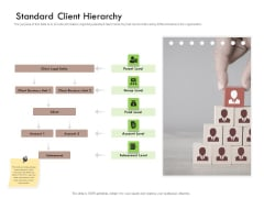 Future Of Customer Onboarding In Banks Standard Client Hierarchy Ppt Gallery Vector PDF