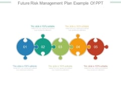 Future Risk Management Plan Example Of Ppt
