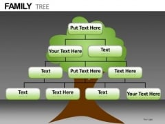 Family Tree Network PowerPoint Templates