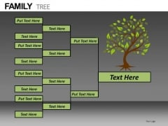 Family Tree PowerPoint Slides Download