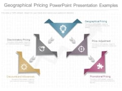 Geographical Pricing Powerpoint Presentation Examples