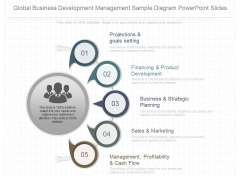Global Business Development Management Sample Diagram Powerpoint Slides