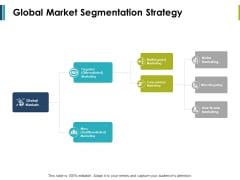 Global Market Segmentation Strategy Ppt PowerPoint Presentation Inspiration Professional