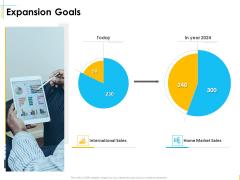 Global Organization Marketing Strategy Development Expansion Goals Structure PDF