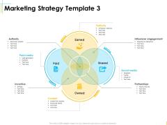 Global Organization Marketing Strategy Development Marketing Strategy Incentive Ideas PDF