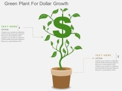 Green Plant For Dollar Growth Powerpoint Templates