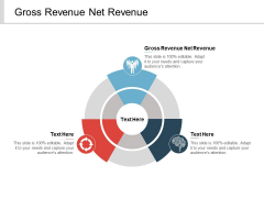 Gross Revenue Net Revenue Ppt PowerPoint Presentation File Information Cpb
