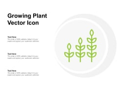 Growing Plant Vector Icon Ppt PowerPoint Presentation Outline Icon