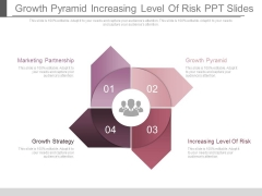 Growth Pyramid Increasing Level Of Risk Ppt Slides
