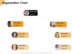 Growth Strategy And Growth Management Implementation Organization Chart Ppt Gallery File Formats PDF