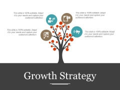 Growth Strategy Template 1 Ppt PowerPoint Presentation Professional Clipart