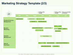 Guide To Overseas Expansion Plan For Corporate Entity Marketing Strategy Template Channel Professional PDF