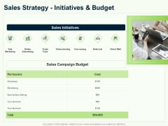 Guide To Overseas Expansion Plan For Corporate Entity Sales Strategy Initiatives And Budget Icons PDF