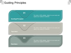 Guiding Principles Ppt PowerPoint Presentation Show Styles Cpb